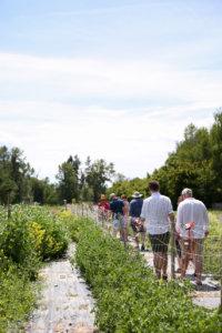 farming, organic, slow food, farm tour, the paisley notebook, sourced, organic, okanagan, british columbia, pop up dinner