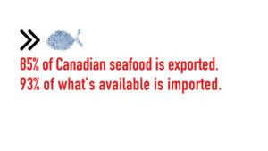 slow fish, fishing, canada, food, blogger